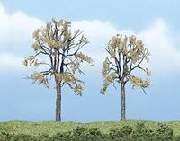 Premium Trees 2.25-3.25In.Dead E - Image 1