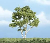 Premium Trees 4In. Brich Tree 1/ - Image 1